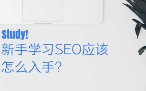 新手学习SEO应该怎么入手?