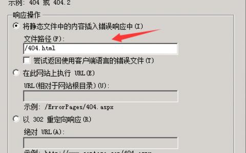 解决win2008服务器IIS设置404错误页乱码的方法